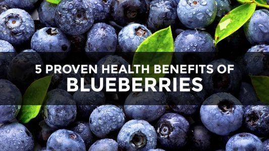 """If blueberries were pharmaceuticals, they would be hailed as the greatest """"miracle"""" health breakthrough in the history of medicine"""