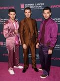 The Jonas Brothers Turned Into Olympians Last Night and We're Impressed With Their Serious Skills