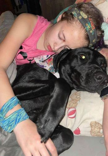 A Fellow Mom Cussed Out My Child About Her Service Dog--What You Should Know