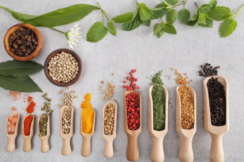 Spices add health benefits as well as flavor; if you're new to using them, start with these