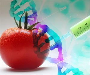 Molecules of GM Food can Accumulate in Human Digestive Tract and Enter Cells of Body: Study