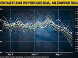 Covid England: Cases are now falling in ALL age groups, official data reveals