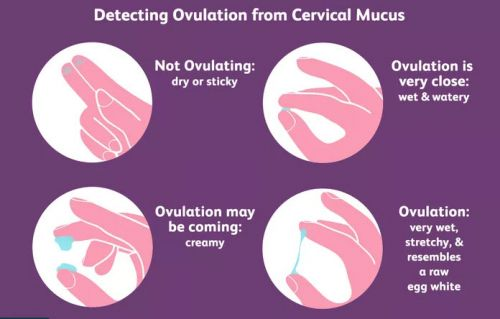 What Causes Cervical Mucus Changes?