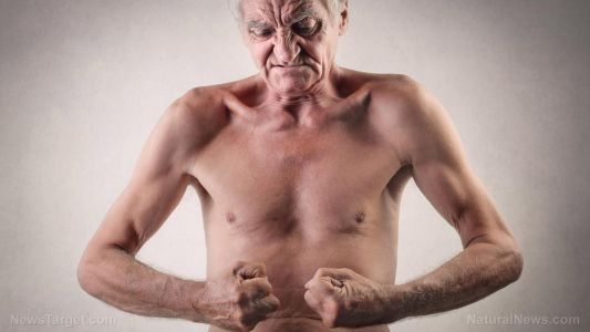 Scientists look at mitochondria for their anti-aging potential on muscles