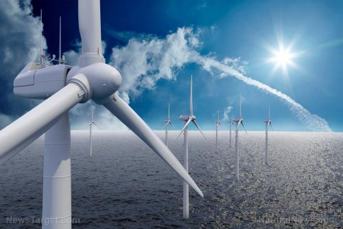 Wind power emits 75 percent less carbon than solar energy, according to new report