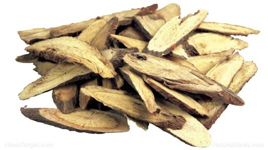Licorice plays an important role in the interaction between Shaoyao Gancao decoction and anticancer drugs