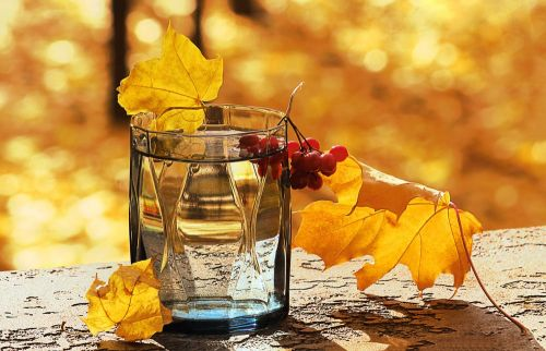 Is Maple Water a Good Alternative for Exercise Hydration?